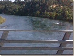 redding_ca_ 003