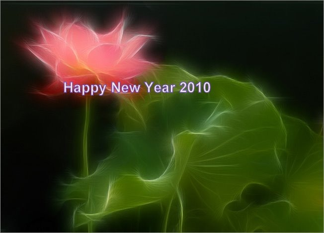 Happy-New-Year-2010-latest-pic