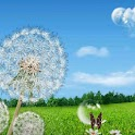Galaxy S3/S4 Dandelion LWP HD Photo