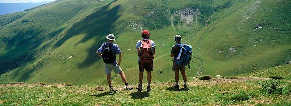 Vall d'Asua, Pallars Sobirà, LleidaPastures a la vall del riu de Caregue, Espot. Tomb al Parc nacional d'Aigües Tortes i Estany de Sant Maurici2002.07