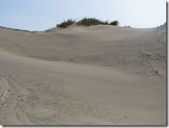 5072 Sand Dunes South Padre Island Texas