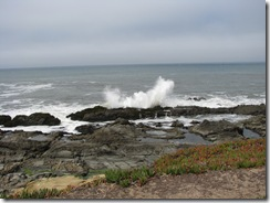 3168 Bean Hollow State Beach CA