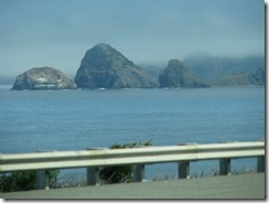 3836 US 101 between Gold Beach & Port Orford OR
