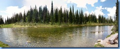 0600 Balsam Lake Meadows in the Sky Parkway RNP BC Stitch