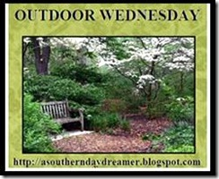OutdoorWEd