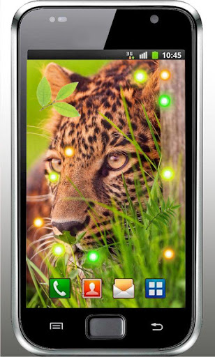 Jaguar Photos live wallpaper