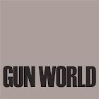 Gun World icon