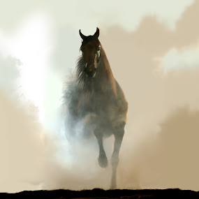 Misty Horse by Charlie Alolkoy - Illustration Animals (  )