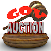 Government Auctions -USA