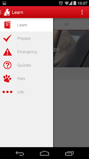 Pet First Aid - Red Cross Screenshot 5