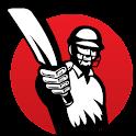Cricket Hub logo