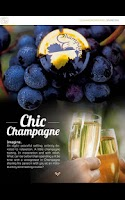 Screenshot of Champagne-Ardenne n°1 English