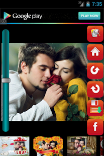 Love Bird Frames Free - screenshot thumbnail