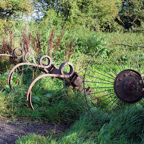 discard by Kathy Aspinall - Buildings & Architecture Decaying & Abandoned ( countryside, wheel, plough,  )