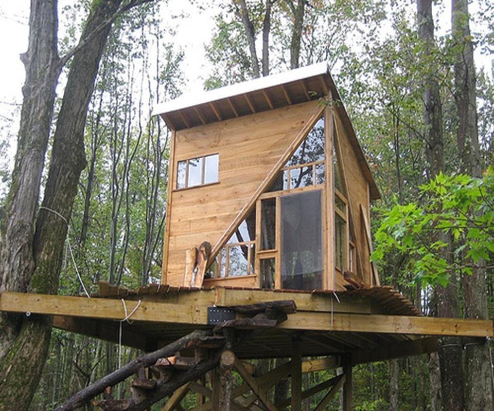 Diy tree house ideas android apps on google play for Tree house window ideas