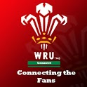 Wales Rugby connect icon