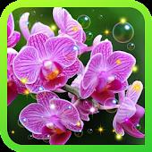 Orchid Magic live wallpaper