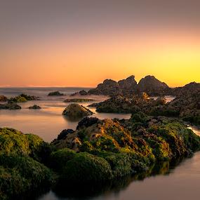 Sunset by Vitor Miguel - Landscapes Beaches ( water, sunset, sunrise, landscape, nikon, rocks )