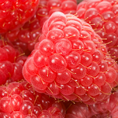 Raspberry HD Pictures