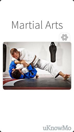 Martial Arts - Combat Defense