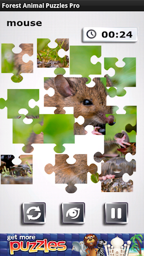 Forest Animal Puzzles Pro