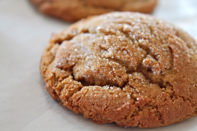 Soft Ginger Snaps Recipe
