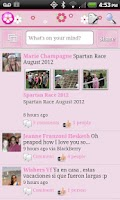 Screenshot of Pink Theme for Facebook