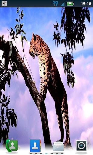 Color Leopard LWP No5 Pro