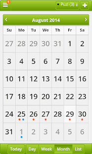 LifePuzl Calendar & Diary App- screenshot thumbnail