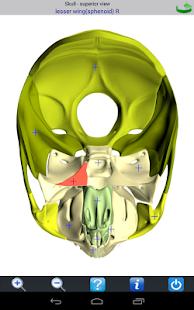 玩免費醫療APP|下載Visual Bones app不用錢|硬是要APP