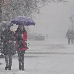 Novi Sad 86 sneg mecava padavine zima foto Robert Getel.JPG