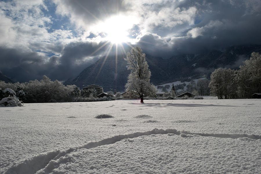 Snow in Savoie by Yannick Faven - Landscapes Prairies, Meadows & Fields ( field, snow, landscape photography, savoie, france, landscape, prairie )