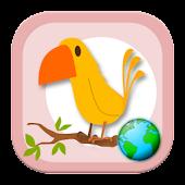 World birds
