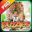 Jungle Cat Puzzles Pro icon