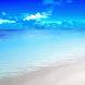 Wavy Beach Shore Live Wallpape