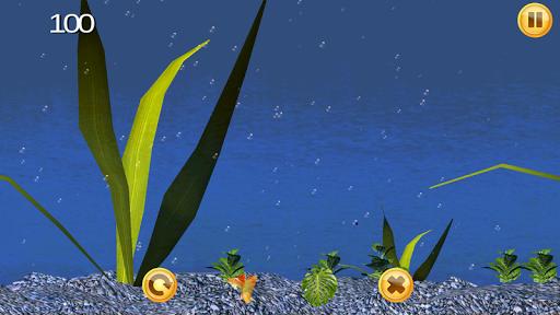 Piranha Aquarium 3D
