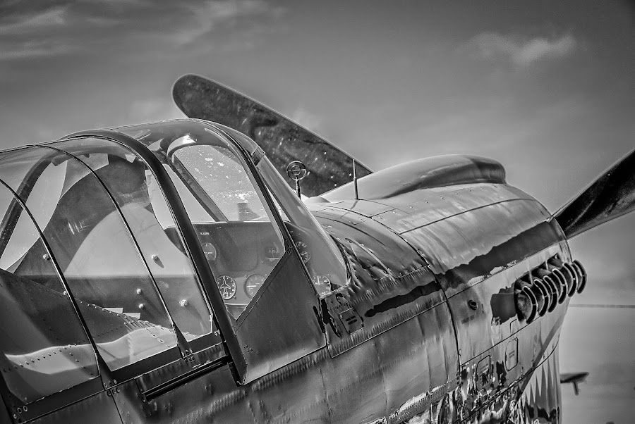 Vintage Warbird by Ron Meyers - Black & White Objects & Still Life