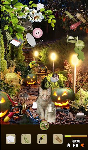 Hidden Object Garden Kittens