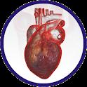 HEART DISEASES RISK CALCULATOR icon