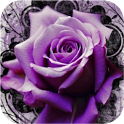3D Roses icon