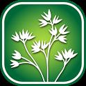 2350 SW Canada Wildflowers icon