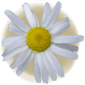 Allergy Diary icon