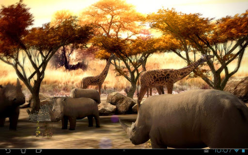 Africa 3D Pro Live Wallpaper Aplicaciones para Android screenshot