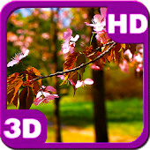 Lonely Stick Sakura Blossom HD