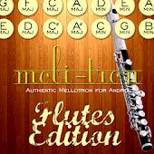 Mobi-Tron: Flutes Edition