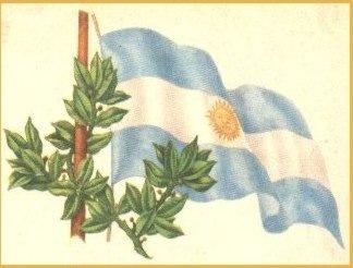 [bandera01[6].jpg]