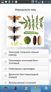 EcoGuide: Forest Insect Pests- screenshot thumbnail