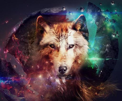5D Wolf