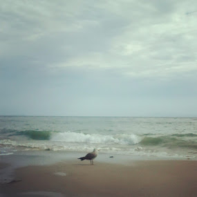 Ocean. by Nena Guzmán - Nature Up Close Sand ( sand, breeze, time, soul, ocean, live )