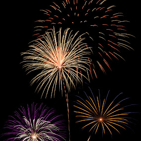 4th of July fireworks by Star Image - News & Events Entertainment ( lights, 4th of july, fireworks, independence day, night sky, Lighting, moods, mood lighting )